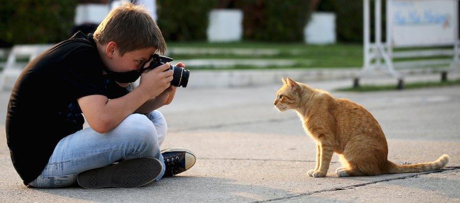 道で猫の写真を撮る少年