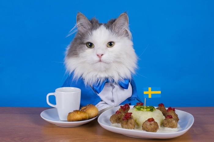 スウェーデンの国旗と猫