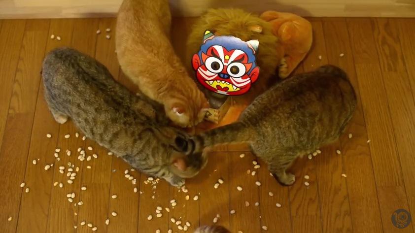 鬼の周りに集まる猫