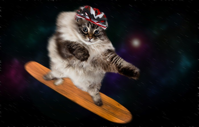 宇宙でスケボーする猫