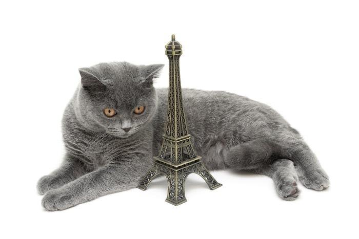 猫とタワーのフィギュア