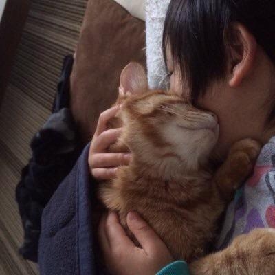 息子の上で眠る猫の写真