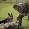 警察犬訓練士とは