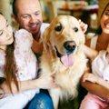 犬にとって『家族』…