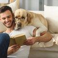頭がいい犬種8選!…