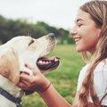 犬が人間のことを『…