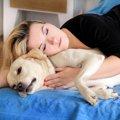 犬と寝るのは大丈夫…