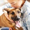 犬が飼い主の帰宅時…