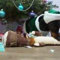 メリークリスマス!…