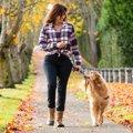 犬の散歩中に飼い主…
