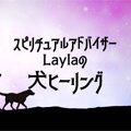 Laylaの犬占い あな…