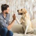 愛犬と向き合うって…
