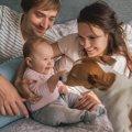 犬が赤ちゃんに嫉妬…