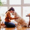 犬に『ありがとう』…