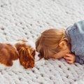 犬が子どもが泣いて…