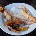 犬が魚の骨を食べた!その危険性と対処法