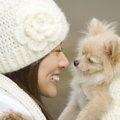 正面からまっすぐはNG!初対面の犬との正しい挨拶方法