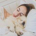 愛犬が飼い主の「腕…