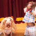 【実写版】犬と猿で…