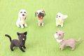 一人暮らしの犬の選…の画像