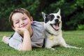 愛犬に合った迷子札…の画像