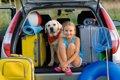 犬と行きたい観光地…の画像