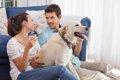 同棲カップルが犬を…の画像