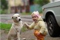 愛犬の利き手をご存…の画像