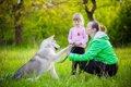 犬にコマンド 上手…の画像