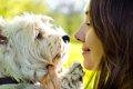 犬を飼うことによっ…の画像