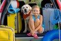 愛犬と旅行へいこう…の画像