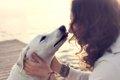 愛犬の癒しは飼い主…の画像