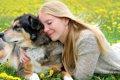 愛犬への過保護レベ…の画像