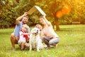 犬と暮らすなら一戸…の画像