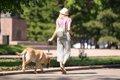 犬が散歩中に言うこ…の画像