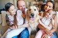 初めて犬を飼った人…の画像