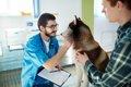 犬の入院 準備する…の画像
