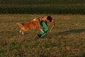 愛犬の飛びつき癖は…の画像