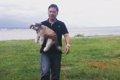 犬を抱っこすること…の画像