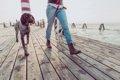 犬を愛している人に…の画像