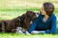 あなたと愛犬の関係…の画像