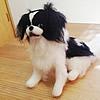 愛犬のお人形を作ろ…の画像