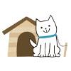 小型犬を飼い始める…の画像