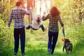 犬との生活は良い事…の画像