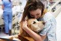 犬の入院費の相場一覧の画像