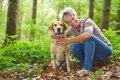 犬の免疫力が下がる…の画像