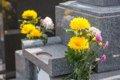 犬の葬儀の流れにつ…の画像