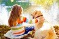 犬を飼う前に読んで…の画像