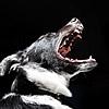 犬が吠えることをや…の画像