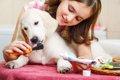 犬のデンタルケアグ…の画像